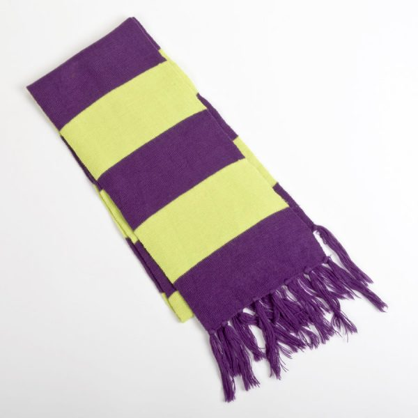 neurocare supporters scarf